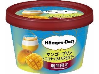 Hagen-Dazs迷你杯芒果布丁椰奶定制杯99ml