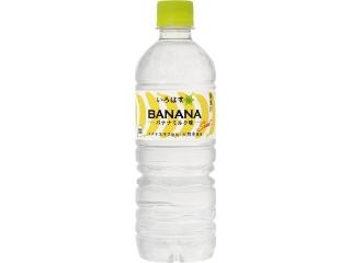 可口可乐I,L,H,香蕉牛奶味宠物555毫升