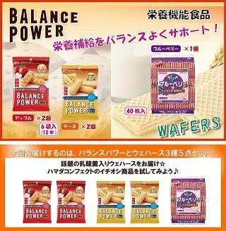 バランスパワーと栄養素プラスのウェハース3種5点セット!
