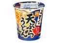 マルちゃん うまいつゆ 天ぷらうどん カップ68g