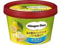 ハーゲンダッツ ミニカップ 日向夏のパンナコッタ パイを添えて カップ102ml
