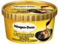 ハーゲンダッツ ジャポネ バニラ&きなこ黒蜜 濃厚仕立て カップ108ml