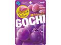 明治 GOCHIグミ 甘ずっぱいグレープ味 袋52g