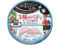 雪印メグミルク Cheese sweets Journey 3種のベリーとヨーグルト風味のチーズスイーツ 箱108g