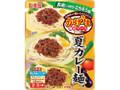 丸美屋 かけうま麺用ソース 夏カレー麺の素 袋300g