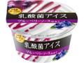 メイトー 乳酸菌アイス ブルーベリーソース仕立て カップ90ml