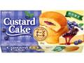 ロッテ カスタードケーキ ブルーベリーチーズケーキ 箱6個