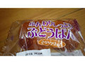岡野食品 ふんわりしっとりぶどうぱん きな粉クリーム 袋1個