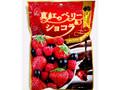 パイン 真紅のベリー&ショコラ 袋70g