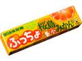 UHA味覚糖 ぷっちょスティック 桜島小みかん 10粒