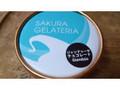 サクラジェラテリア フィオリトゥーラ ジャンドゥーヤチョコレート
