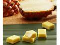 ロイズ石垣島 生チョコレート パイナップル 箱20粒