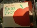 ラグノオ 気になるリンゴ 箱1個