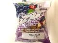 栄屋乳業 アンデイコ(andeico) ブルーベリー&レアチーズシュークリーム 袋1個