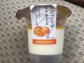 アンデイコ マンゴーのレアチーズ カップ1個