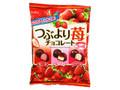 名糖 つぶより苺チョコレート 袋290g
