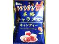 ライオン菓子 本格キャラメルキャンディー 72g(個包装込み)