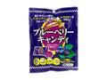 ひかり ブルーベリーキャンディ 袋90g
