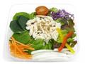 セブン-イレブン 蒸し鶏と11種野菜のサラダ