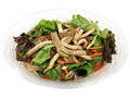 セブン-イレブン 鶏チャーシューと野菜の中華春雨サラダ