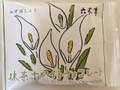 六花亭製菓 抹茶ホワイトチョコレート 20g