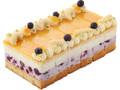 ビオクラ フローズンケーキ カシス&バニラクリーム フレッシュライチ味