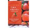 豊上製菓 栃木スカイベリー ベイクドショコラ 12個