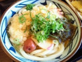 丸亀製麺 大海老天うどん