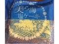 日南物産 美ら海塩ケーキ