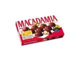 明治 マカダミアチョコレート 箱9粒