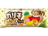 赤城 ガリ子ちゃん フルーツミックス 袋110ml