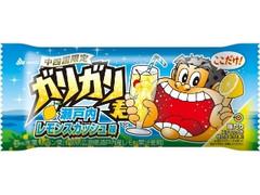 赤城 ガリガリ君 瀬戸内レモンスカッシュ味 袋110ml