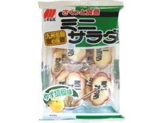 三幸製菓 ミニサラダ ゆず胡椒味 袋22枚