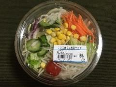 ベジミール 10品目の生野菜サラダ