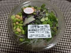 わかば農園 緑の野菜のサラダバーレル 240g