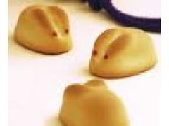寿製菓 因幡の白うさぎ 箱6個