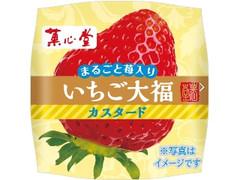 菓心堂 いちご大福カスタード 袋1個