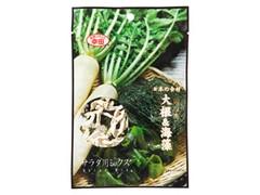 幸田 日本の食材 大根&海藻 袋10g