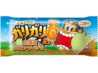 赤城 ガリガリ君 北海道メロンソーダ味 袋110ml