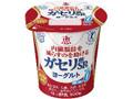雪印メグミルク 恵 megumi ガセリ菌SP株ヨーグルト カップ100g