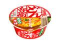 日清食品 日清のどん兵衛 天ぷらそば 東 カップ100g