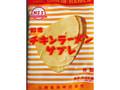 日清食品 カップヌードルミュージアム チキンラーメンサブレ 12枚