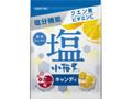 ロッテ 塩小梅 梅&レモン 袋84g