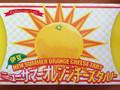 前田製菓 伊豆ニューサマーオレンジチーズタルト 箱6個
