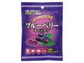 東海氷糖 ブルーベリーキャンディ 袋100g