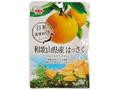 JA全農 和歌山県産はっさくひとくちドライフルーツ