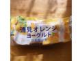 サンラヴィアン マイケーキ 清見オレンジヨーグルト 袋1個