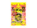 ジャパンスパイス ラーメンの具 袋60g