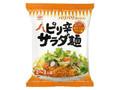 ヒガシマル ピリ辛サラダ麺 袋50g