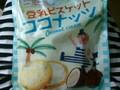 カルディ 豆乳ビスケット ココナッツ 袋10枚